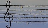 Mevlid ve Musikî